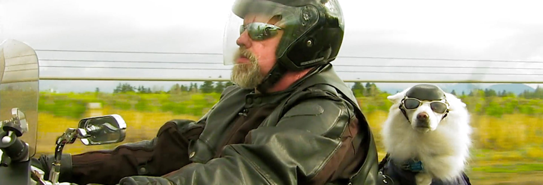 hero-wide-b2b-motorcycle-blog